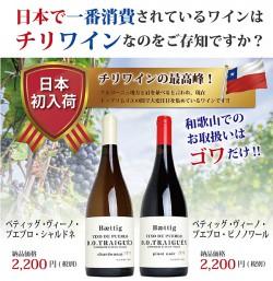 日本初入荷チリワイン